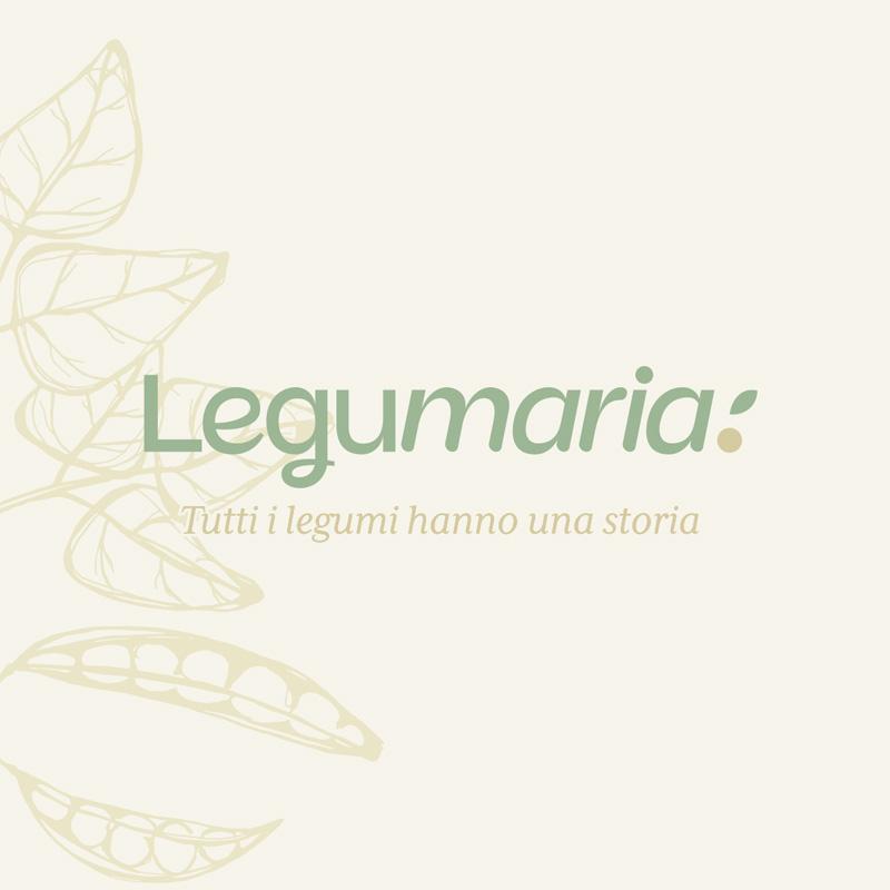 creazione logo aziendale legumaria imola - area web